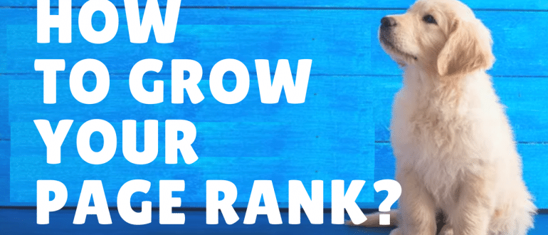 How to grow your Page Rank?