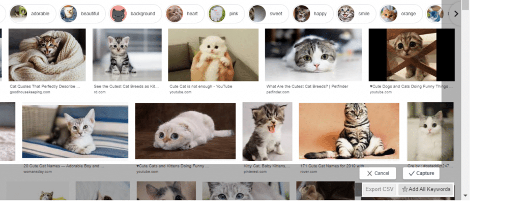 Google images screenshot